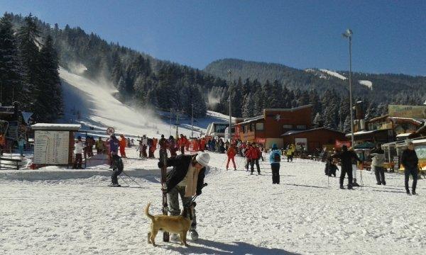 Skifahren in Borovets bei schönstem Sonnenschein